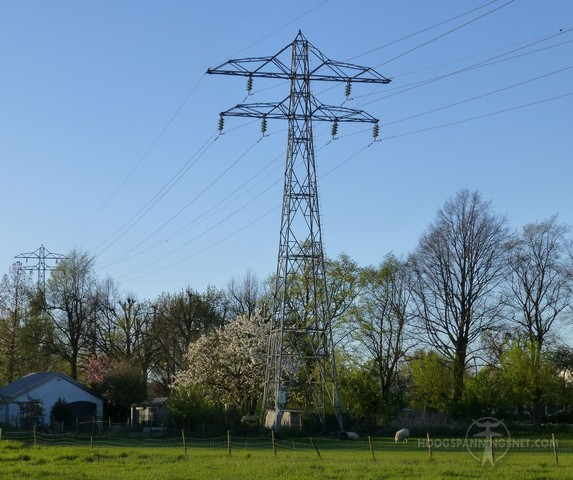 Mast van de Maand mei 2015 - Ridderkerk-Zwijndrecht