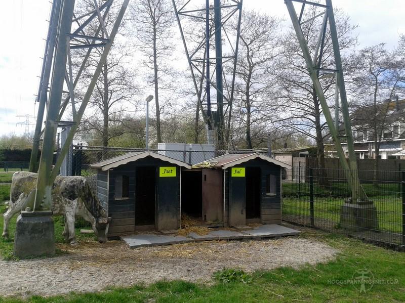 Alpaca's onder het broekstuk