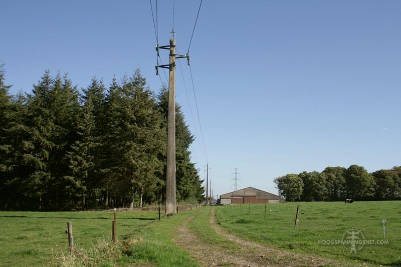 Beest van een 15 kV-lijn in de Condroz